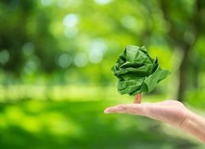 ¡Feliz Día del Medio Ambiente!